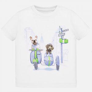 T-shirt animaletti